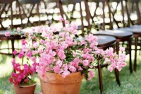 pink and fuchsia potted blooms to decorate the aisle and make it bold without wasting any flowers