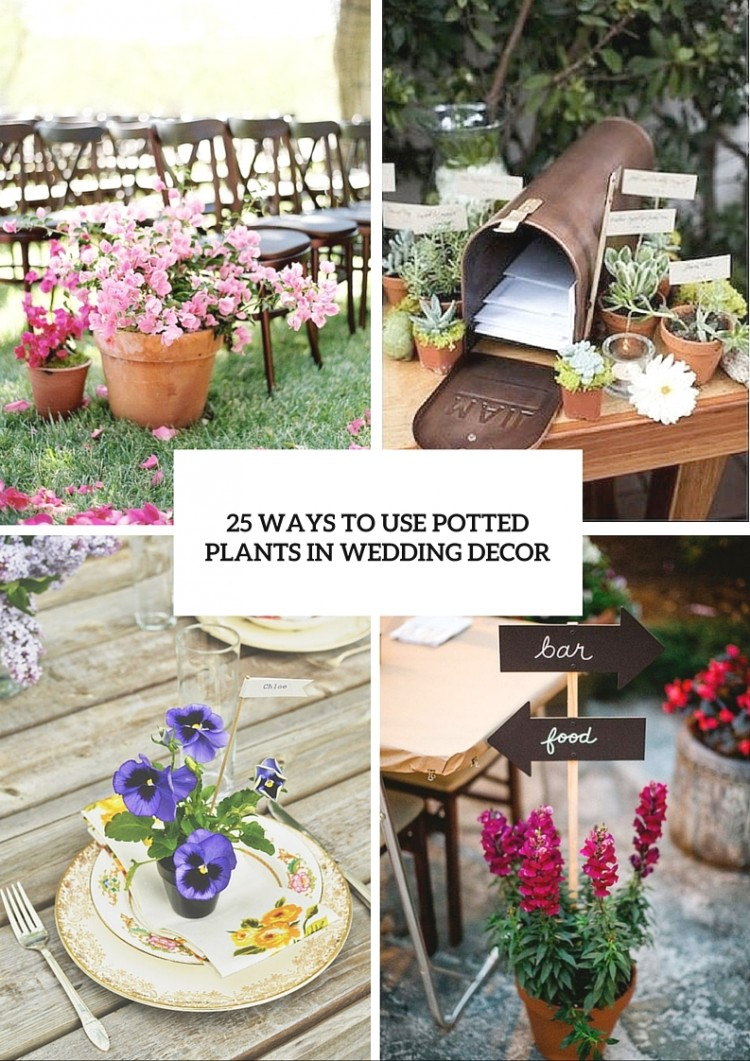 how to use potted plants in your wedding decor 25 unique ideas