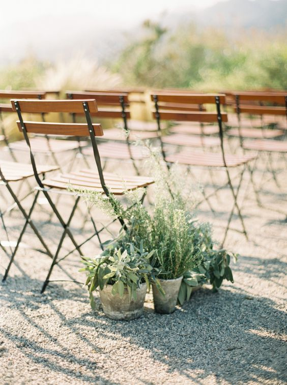 potted greenery and succulents to line up the aisle and make it fresher and bolder