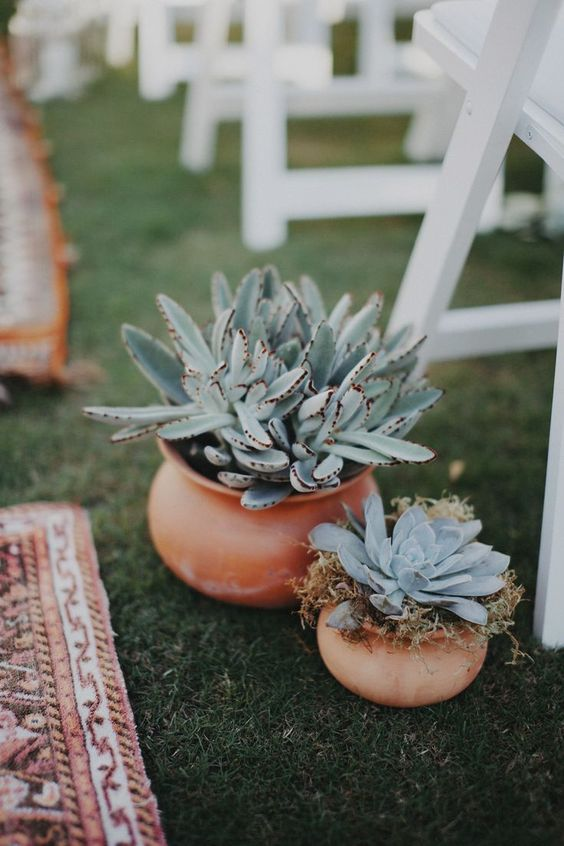 potted pale succulents are nice decorations to highlight the wedding aisle for a boho or desert wedding