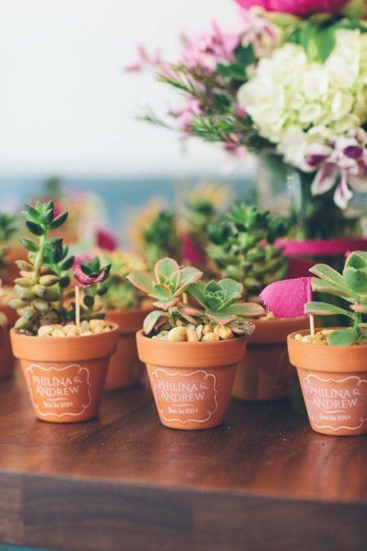potted plants bridal shower favor