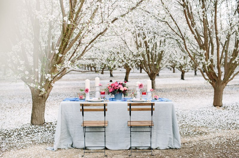 Picture Of boho meets modern wedding shoot almond orchard  10