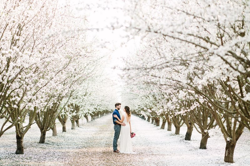 Picture Of boho meets modern wedding shoot almond orchard  2