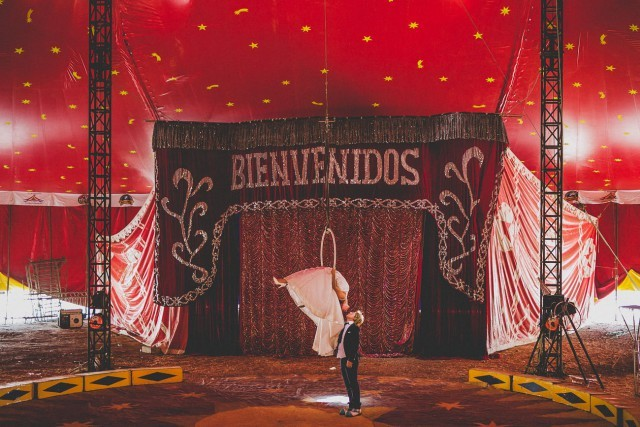 Bold Circus Performers' Wedding In Chile