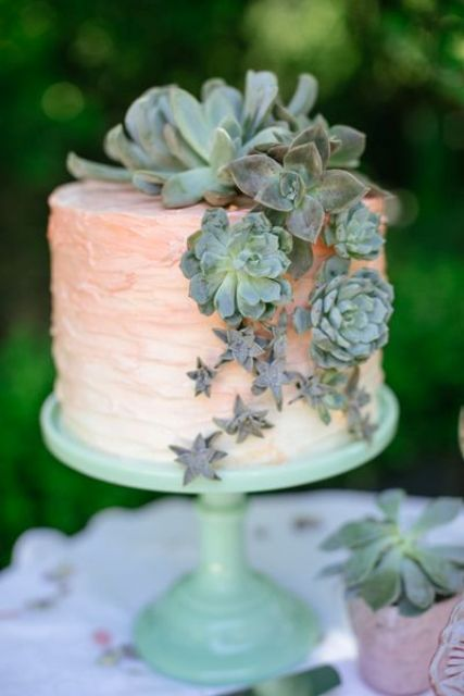 blush wedding cake decorated with succulents