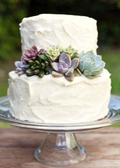 simple succulent wedding cake