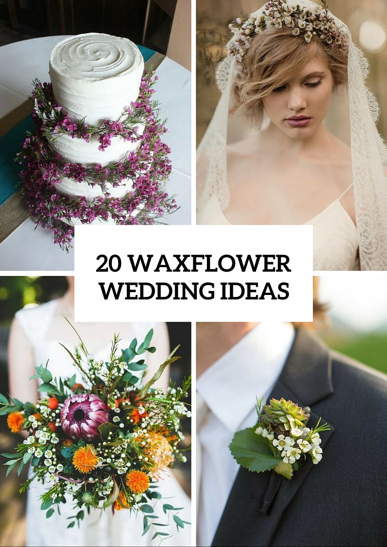 Cute Ideas To Incorporate Waxflowers Into Your Wedding