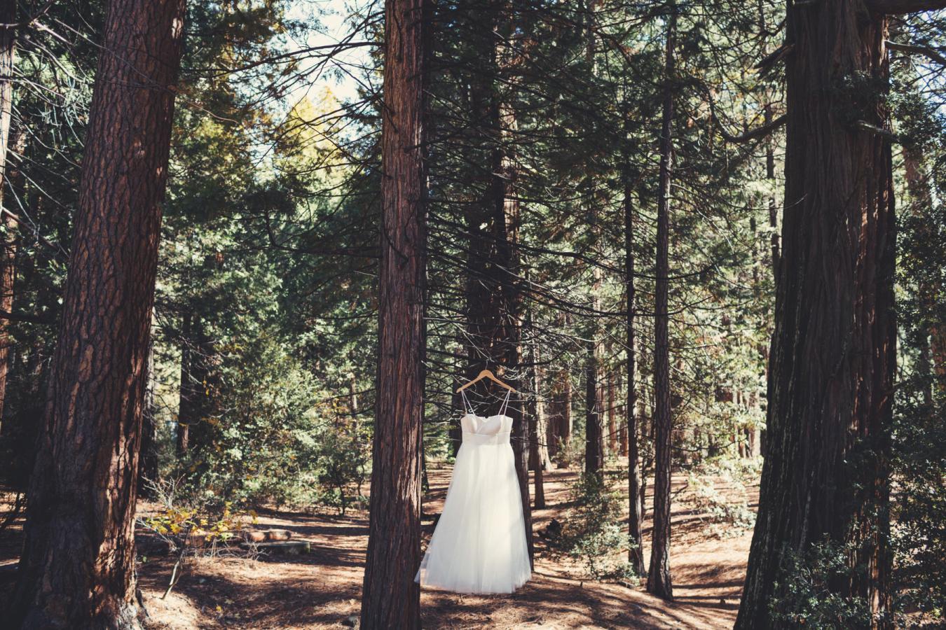 Picture Of Gentle Woodland Wedding In Yosemite 3