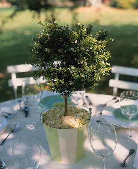 Table centerpiece with a tree
