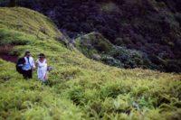 Wonderful Rustic Wedding In The Mountains Of Tahiti 11