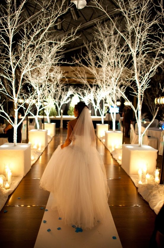 lit white trees are a great idea for a winter wonderland wedding aisle