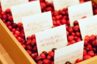 06 golden trays filled with cranberries to hold the escort cards