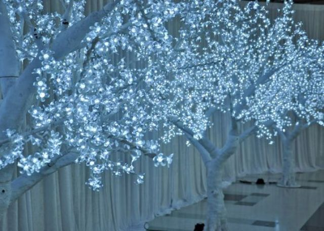 LED lit trees create a magical atmosphere for your reception and aisle