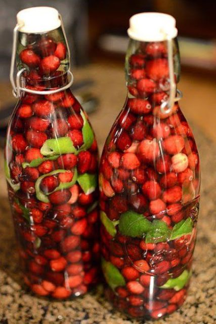 cranberry with lime in bottles wedding favors