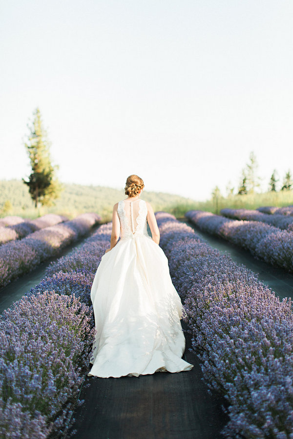 Enjoy the contrast between the ivory bridal dress and the bold lavender field