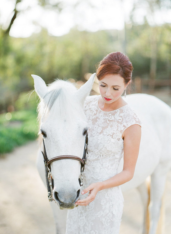 A gorgeous white horse became an important part of the wedding shoot
