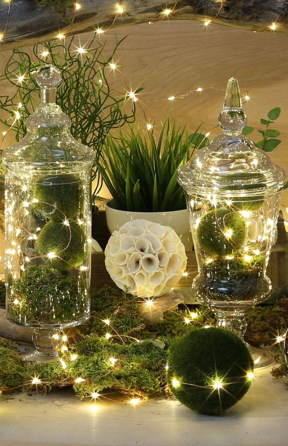 Picture Of Moss With Lights In Vases