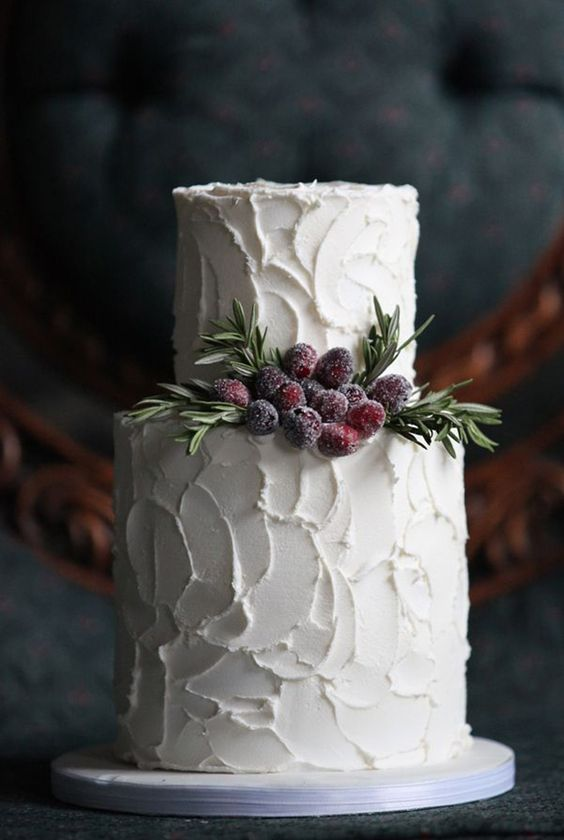 modern cake with sugared cranberries and fir