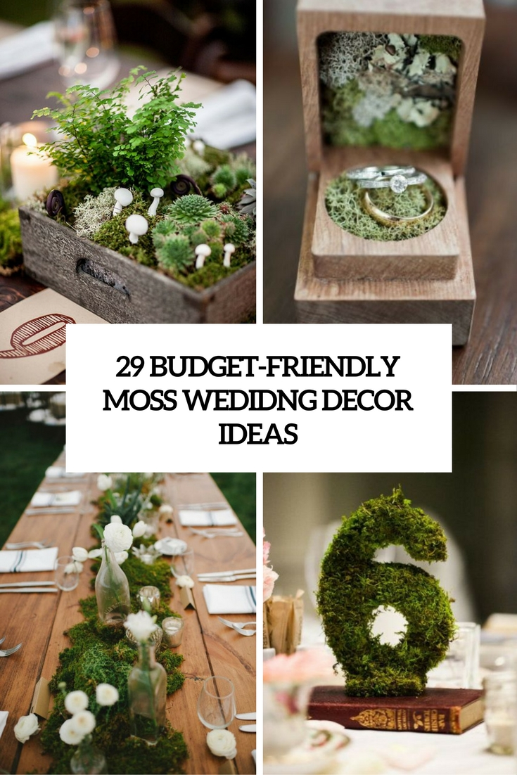 Budget Friendly Moss Wedding Decor Ideas Cover