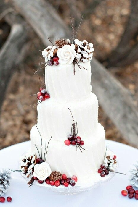 white cake decorated with pinecones, cranberries and branches