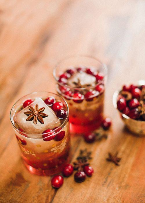 cranberry bourbon fizz