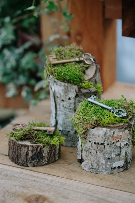 vintage keys on moss placed on wood logs for decor