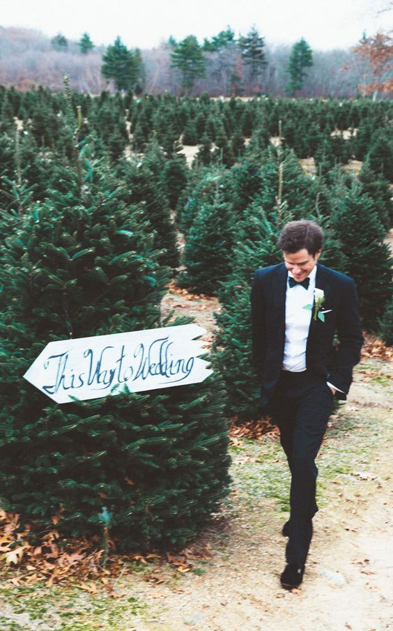 choose a Christmas tree farm for your wedding venue