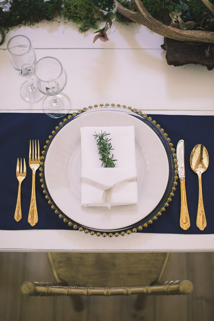 Navy was chosen as the main color of the shoot to contrast with gold accents and the natural decor added luxury