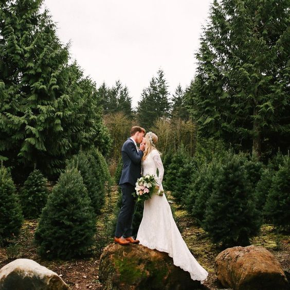 take winter wedding photos in a fir tree farm