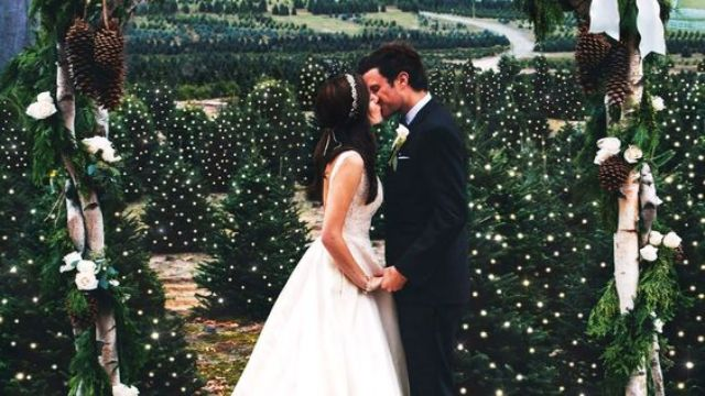 fantastic winter wedding backdrop of Christmas trees with lights all over