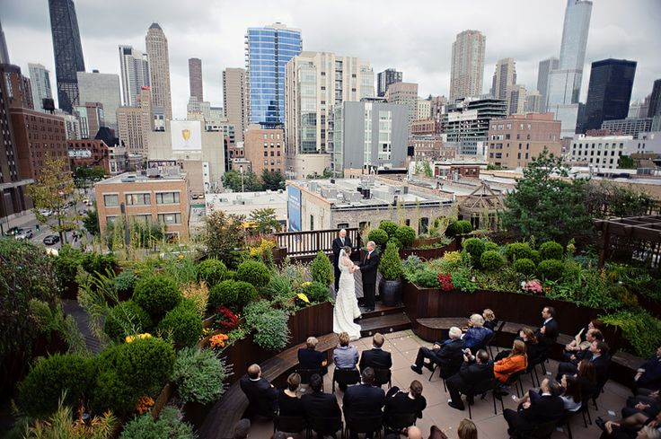 rooftop garden among skyscrapers looks a million bucks