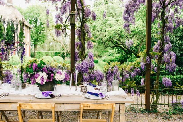 Such a wisteria terrace is a perfect space for your wedding reception