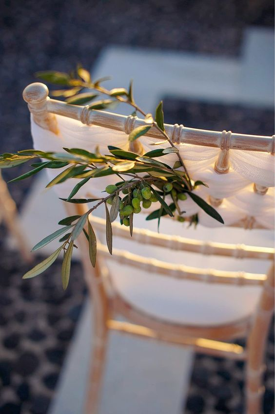 olive branches for decorating chairs