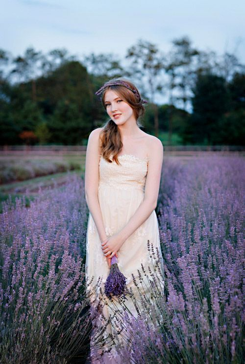 dip into lavender field to get perfect photos and warm memories