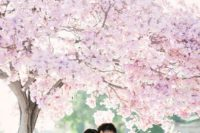 06 cherry blossoms are amazing for taking pics, they will be incredibly romantic