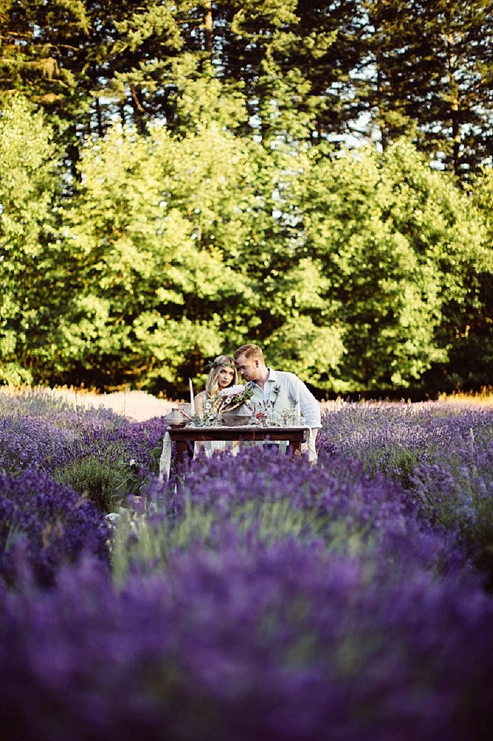 Lavender fields are fantastic for every kind of shoot, from an engagement to a wedding one