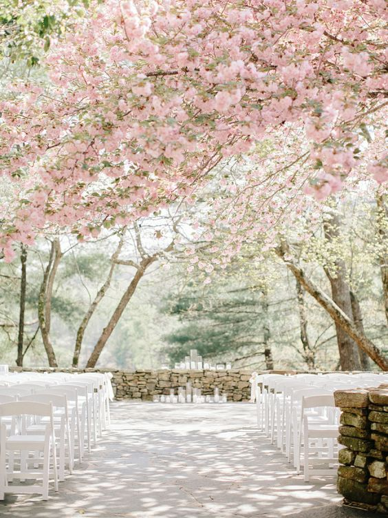 cherry blossom wedding venue is a very romantic place