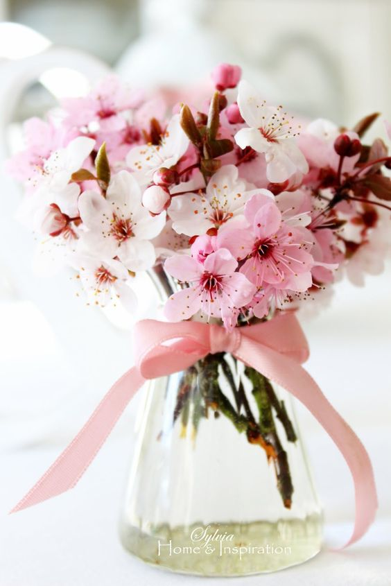 cherry blooms in a glass vase with a pink bow on it