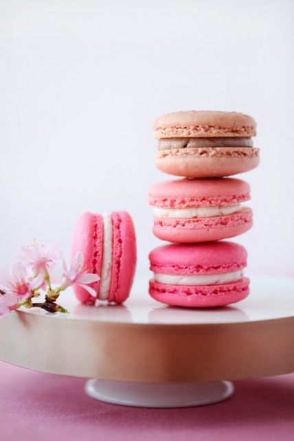 cherry blossom macarons look and taste gorgeous