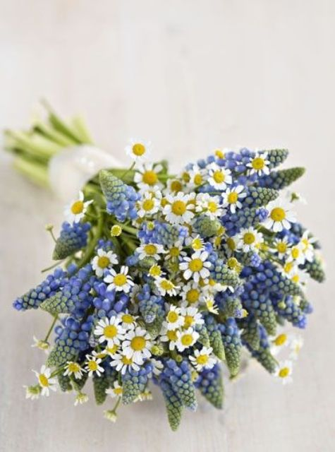 daisy and muscari bouquet