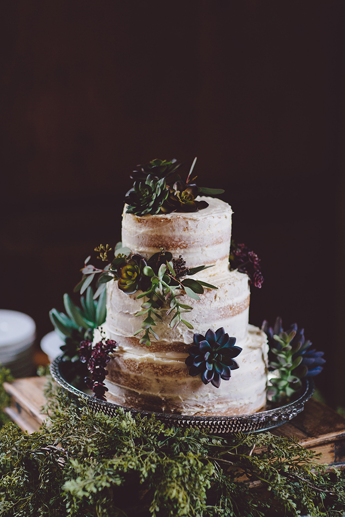 The wedding cake was a semi naked one with succulents