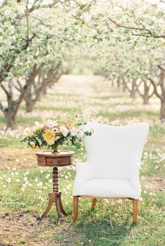 an apple orchard is an amazing place to get married, epsecially in the spring