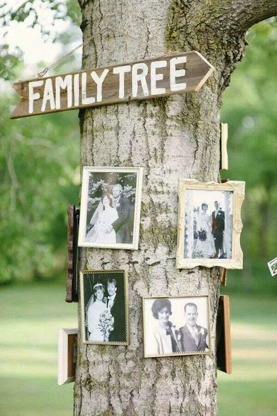 backyard wedding decor with family photos