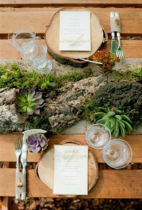 wooden logs with succulents and moss, wood slices as placemats