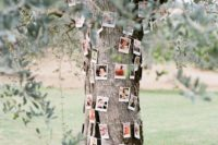 26 cover a tree with your family pics
