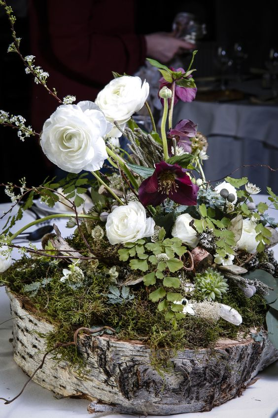 tree slice base with a bed of moss, ranunculus & hellebores