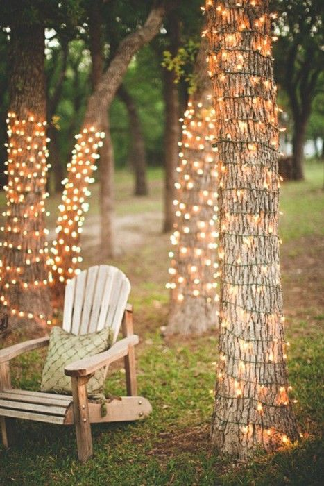 wrap the trees with string lights
