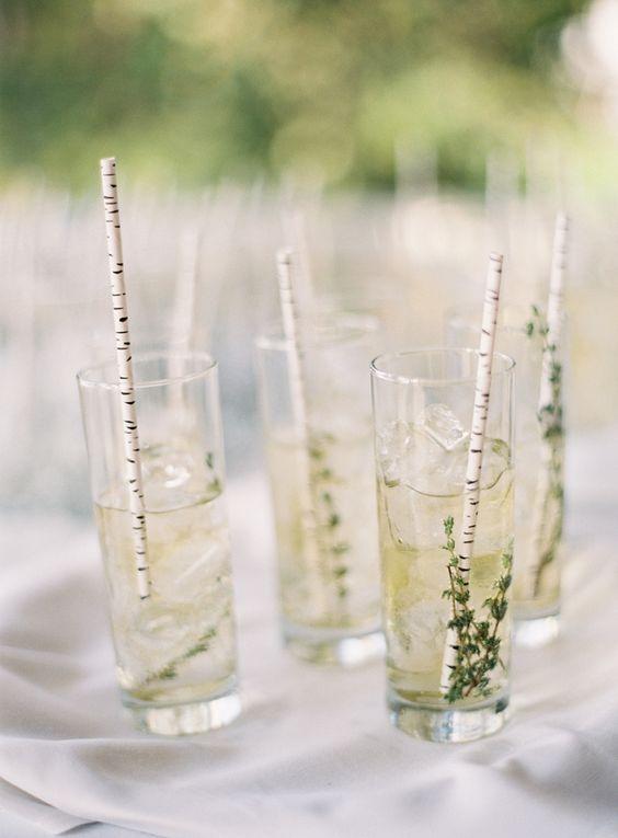 birch paper straws for drinks