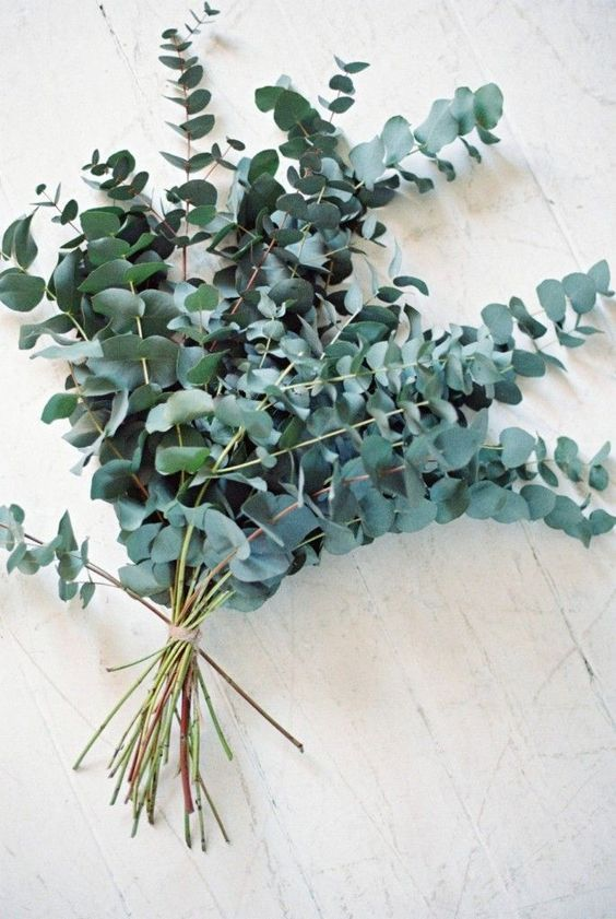 eucalyptus wedding bouquet is a very delicate option