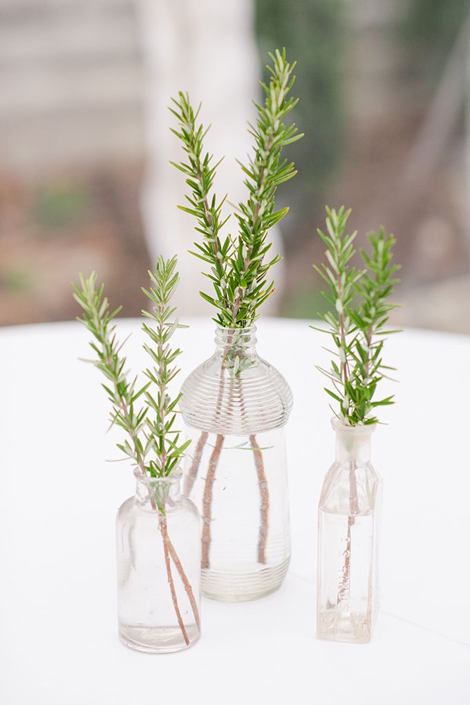 The centerpieces looked cute, these were herbs that reminded of Spain